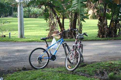 旅日記 クック諸島 2012MAY その17 ラロトンガでサイクリング_f0059796_1736382.jpg