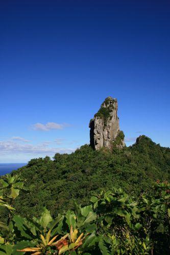 旅日記 クック諸島 2012MAY その16 Paさんのトレッキング_f0059796_1781440.jpg