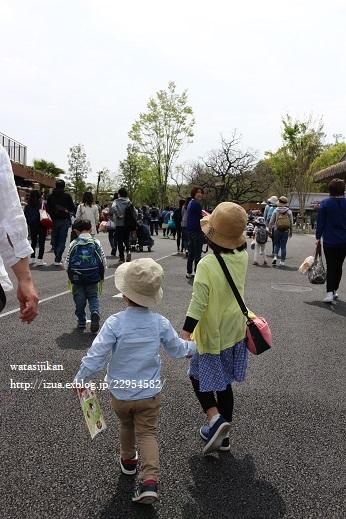 動物園へ行く_e0214646_21373255.jpg