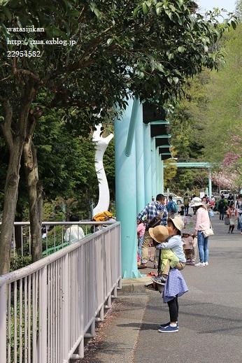 動物園へ行く_e0214646_21393583.jpg