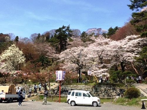 花見 ~in二本松~_e0211357_9571947.jpg