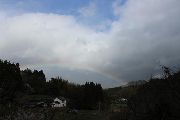 祝福の虹に..かんぱ~い♪_a0174458_04566.jpg