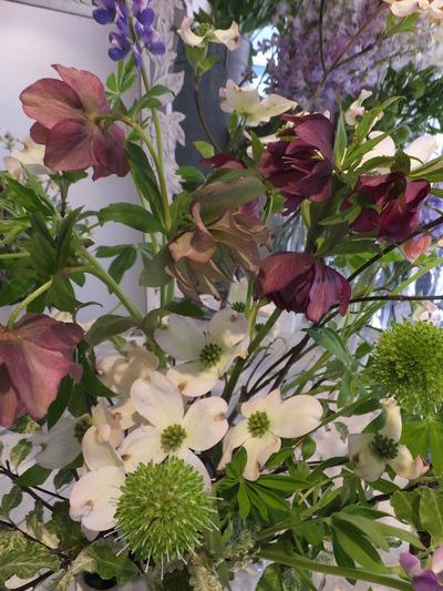 オークリーフ花の教室(甘艸さんと大草さんの作品)_f0049672_18441212.jpg