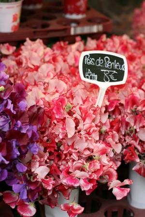 Paris 私のお気に入り ~マルシェ編~ 「マルシェのお花」_c0138180_013933.jpg