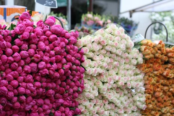 Paris 私のお気に入り ~マルシェ編~ 「マルシェのお花」_c0138180_02311.jpg