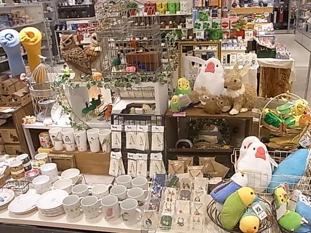 東急ハンズ梅田店「インコと鳥の雑貨展」ディスプレイ変更、新作到着_d0322493_1355419.jpg