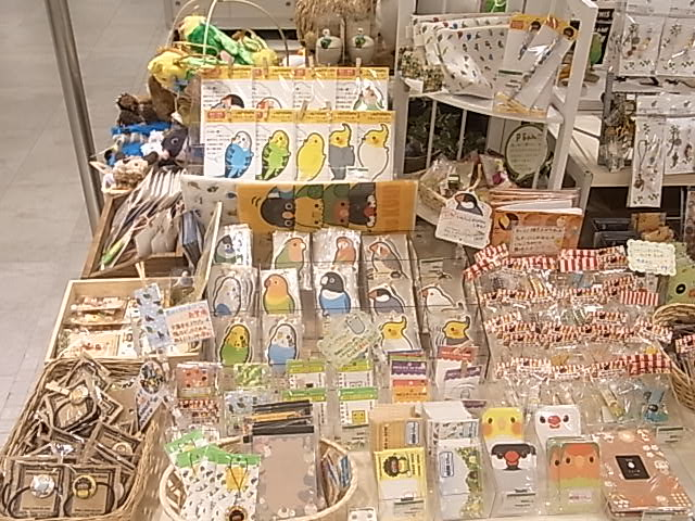 東急ハンズ梅田店「インコと鳥の雑貨展」ディスプレイ変更、新作到着_d0322493_1385527.jpg