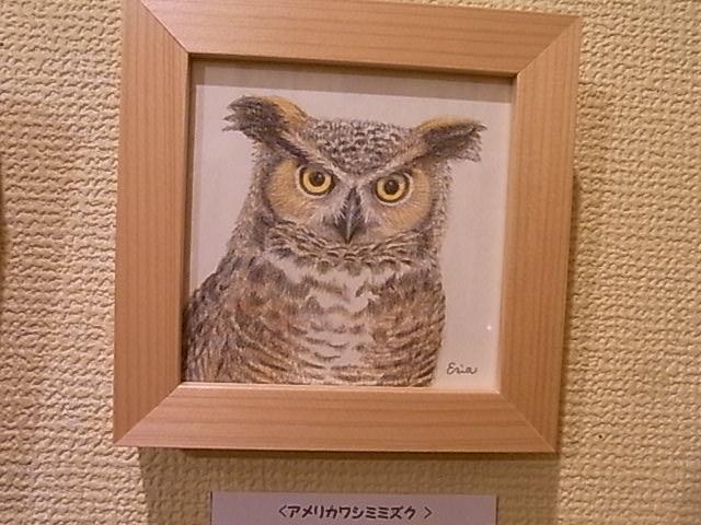 関西つうしん で、開催中の鳥展vol.5 4月20日まで、新作到着!_d0322493_1502998.jpg