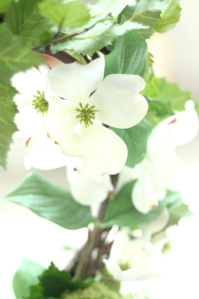 母の日レッスン_白樺のリース_d0000304_152192.jpg