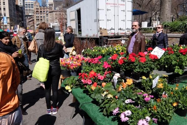 春がやってきたニューヨークの青空市場、Green Market_b0007805_22187100.jpg