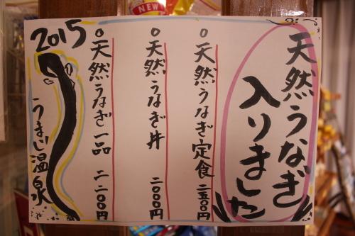 安田川の鰻_e0101917_20402136.jpg