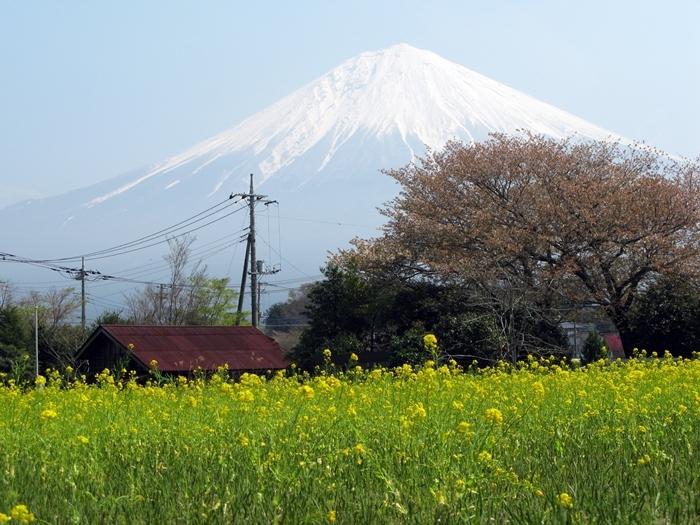 アラ還旅行 富士山編_f0129726_23011732.jpg