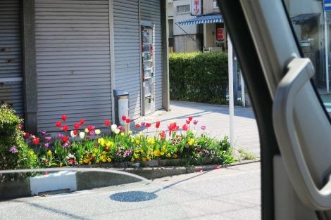花標識_a0259130_23422178.jpg