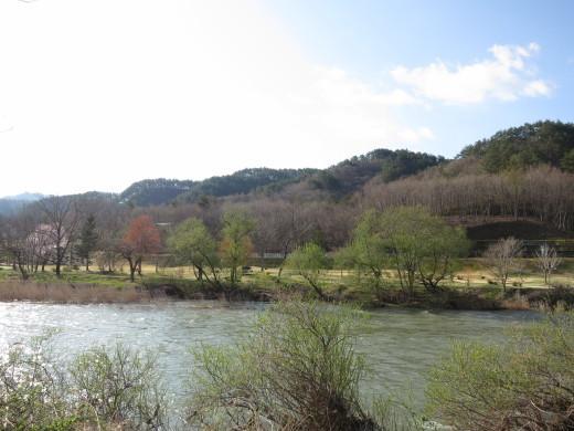 今日の通勤路の車窓から ~早咲き山桜~_b0206037_07471678.jpg
