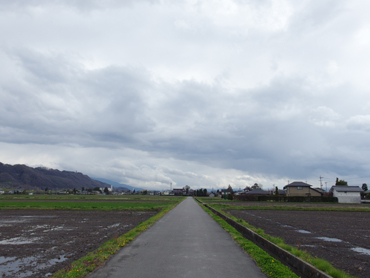 冷たい風が吹く道_a0014840_7221699.jpg