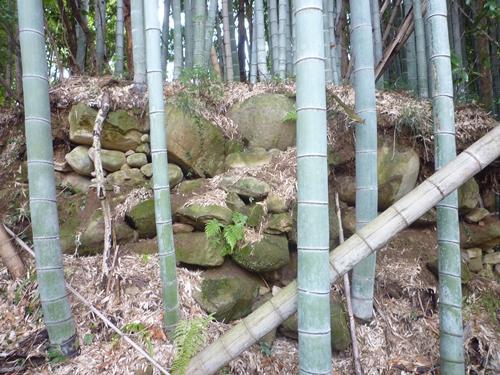 (11)山田古墳群・神名備山の麓で_c0222861_20214463.jpg