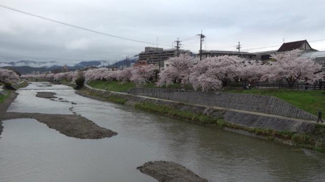 雨の京都 第15回森の手作り市_a0306166_13112592.jpg
