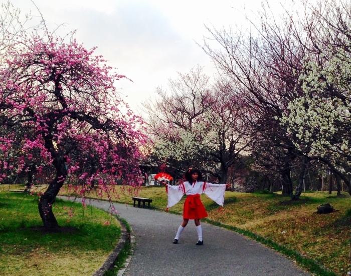 梅祭り_b0087077_16544616.jpg