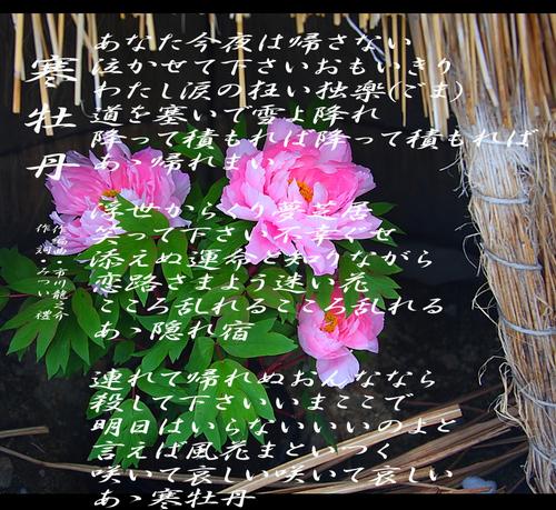 d0095910_6503260.jpg