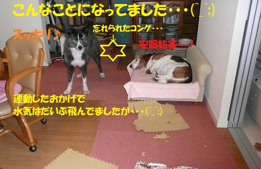 f0121712_6322232.jpg