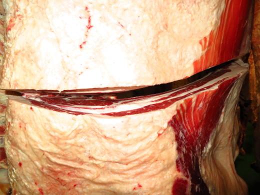 いわいずみ短角牛肉の品質チェック_b0206037_16093526.jpg