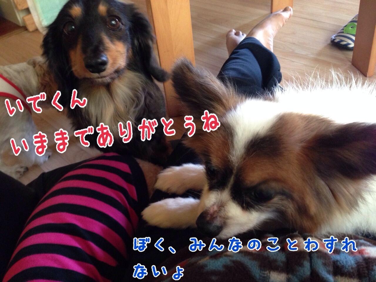 c0342841_16111750.jpg