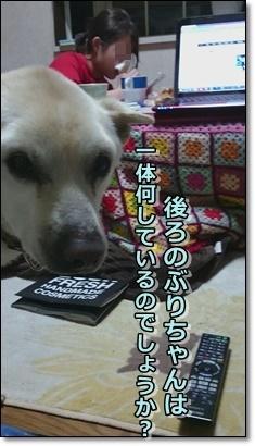 b0151748_12364314.jpg