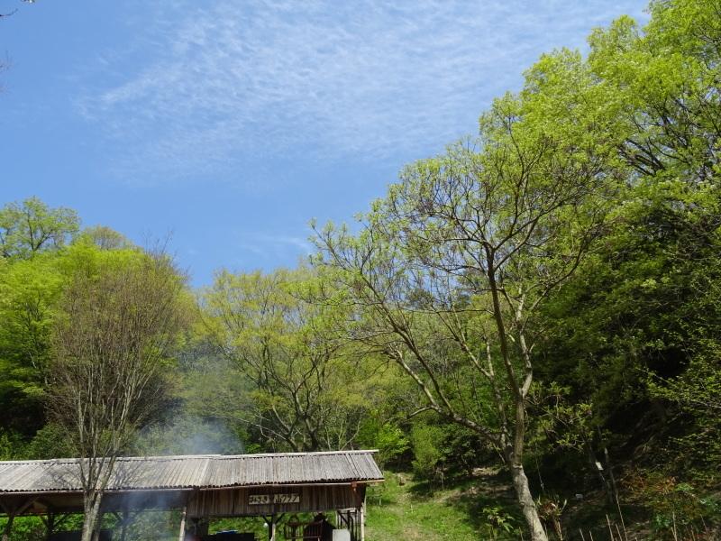 1号物置周辺の片付け in 孝子の森     by     (TATE-misaki)_c0108460_20151991.jpg