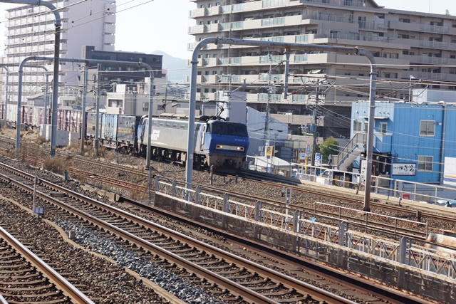 藤田八束の貨物列車写真集:地方創生に貢献、貨物列車「桃太郎」の素晴らしい勇姿_d0181492_2355534.jpg