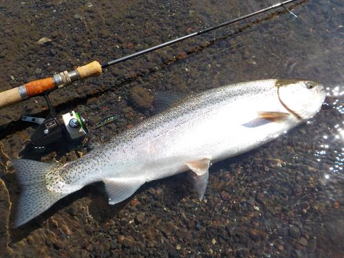 ・Fishing Diary 4/16_a0165135_15134334.jpg