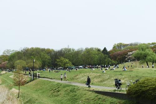 はけのおいしい朝市 in 武蔵野公園4月19日開催!_a0123451_20331710.jpg