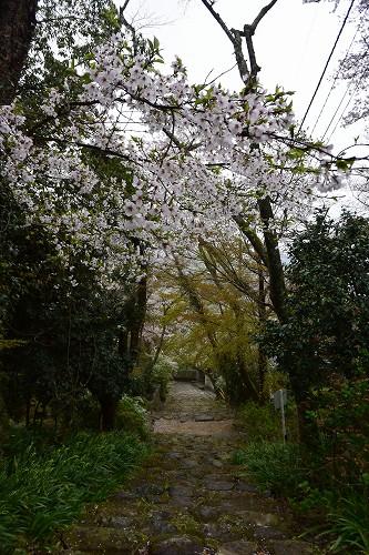 桑実寺→永源寺_c0124100_1342778.jpg