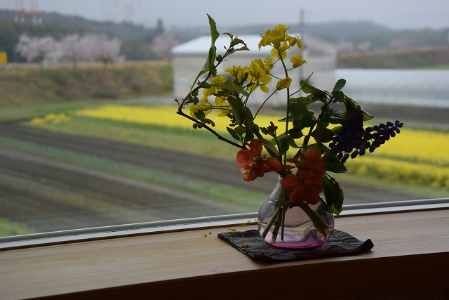 ファームキッチン「野菜花」でランチ_c0124100_13521444.jpg