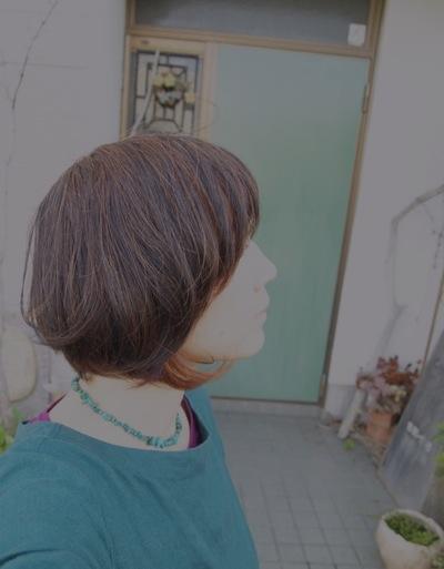 b0129115_15402757.jpg