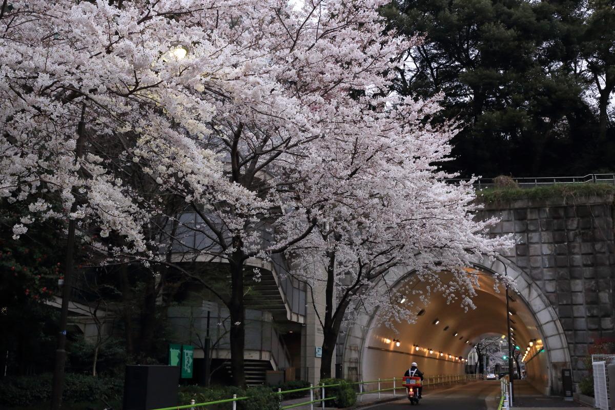 虎ノ門  愛宕トンネル界隈_b0061717_14143917.jpg
