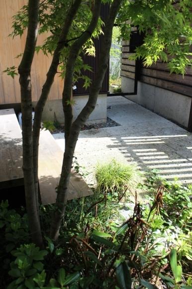 新緑の庭で_c0310571_21192447.jpg