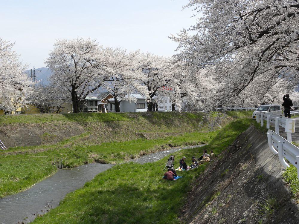 花より団子_b0329588_16431125.jpg