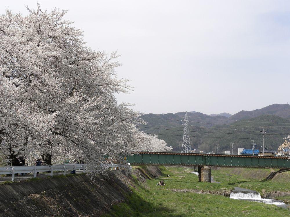 花より団子_b0329588_17133324.jpg