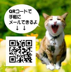 b0314689_18325612.jpg