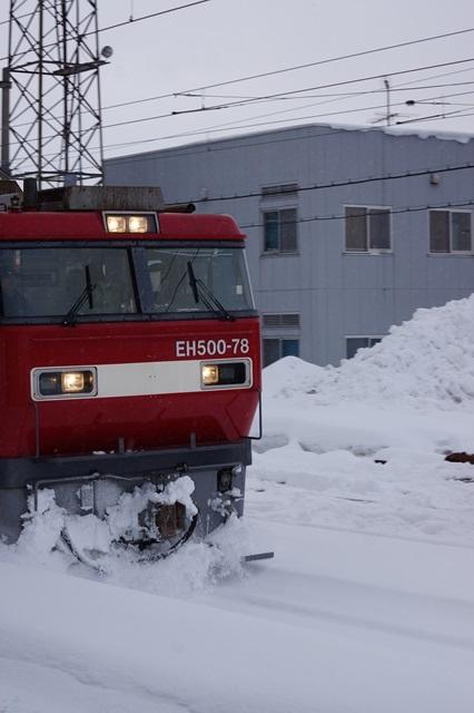 藤田八束の北国の列車を訪ねる旅:北国の列車たち、極寒風雪の中で頑張っています_d0181492_1702877.jpg