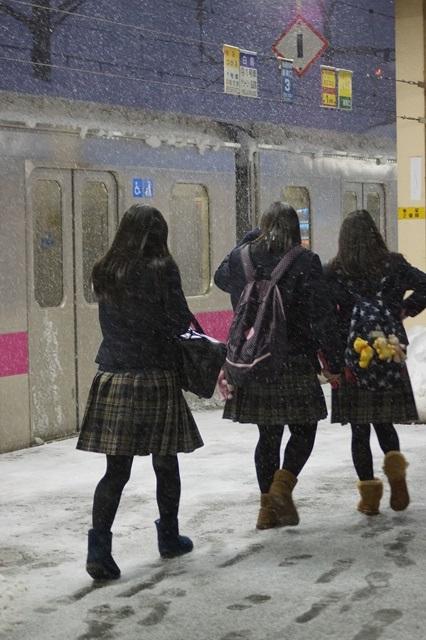 藤田八束の北国の列車を訪ねる旅:北国の列車たち、極寒風雪の中で頑張っています_d0181492_173101.jpg