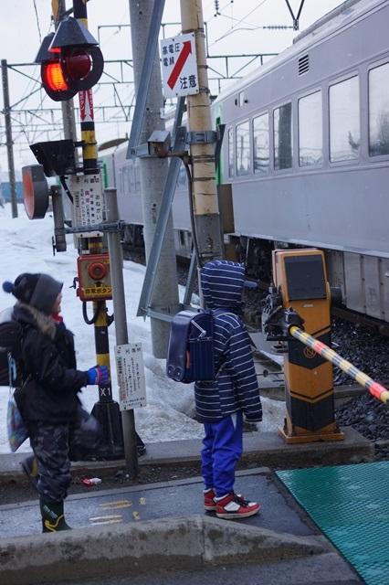 藤田八束の北国の列車を訪ねる旅:北国の列車たち、極寒風雪の中で頑張っています_d0181492_1772764.jpg