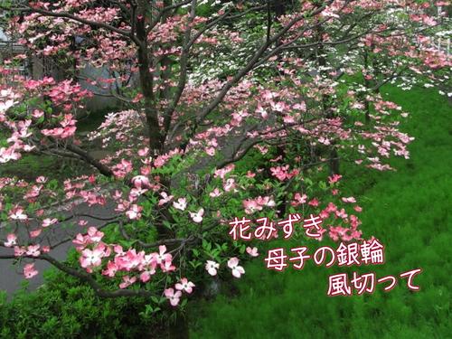 f0137096_2231924.jpg