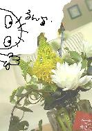 c0028304_11453876.jpg