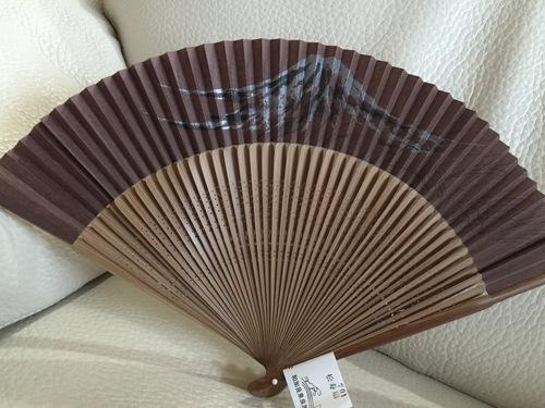 富士山三昧_a0326106_12344185.jpg