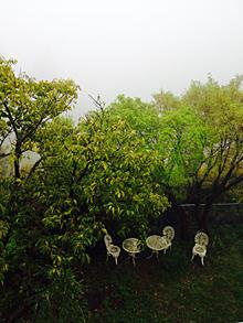 濃霧_e0103024_15285539.jpg