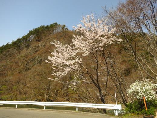 春の陽だまりにて_b0206037_13151065.jpg
