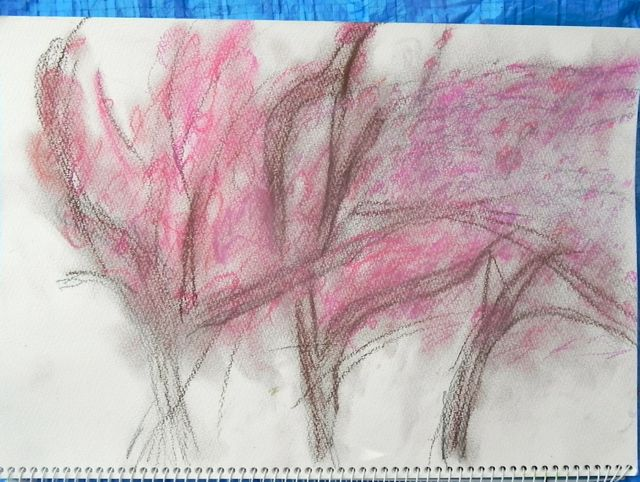 八重桜で写生会_d0076558_60629.jpg