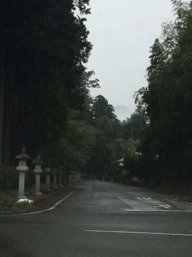 日本の春_b0100062_8295368.jpg
