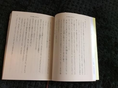 アナーセン引越し物語  番外編_b0137969_12304470.jpg
